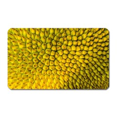 Jack Shell Jack Fruit Close Magnet (rectangular) by Jojostore