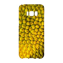 Jack Shell Jack Fruit Close Samsung Galaxy S8 Hardshell Case  by Jojostore