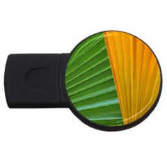 Pattern Colorful Palm Leaves Usb Flash Drive Round (4 Gb) by Jojostore