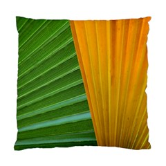 Pattern Colorful Palm Leaves Standard Cushion Case (two Sides) by Jojostore
