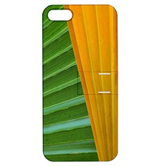 Pattern Colorful Palm Leaves Apple Iphone 5 Hardshell Case With Stand by Jojostore