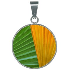 Pattern Colorful Palm Leaves 25mm Round Necklace