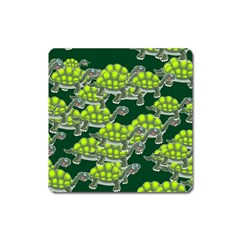Seamless Tile Background Abstract Turtle Turtles Square Magnet