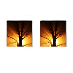 Rays Of Light Tree In Fog At Night Cufflinks (square)
