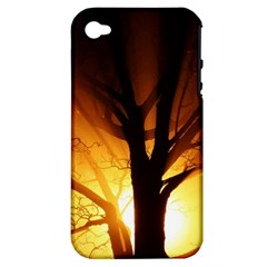Rays Of Light Tree In Fog At Night Apple Iphone 4/4s Hardshell Case (pc+silicone)
