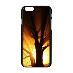 Rays Of Light Tree In Fog At Night Apple Iphone 6/6s Black Enamel Case