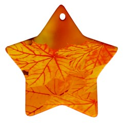 Bright Yellow Autumn Leaves Ornament (star)