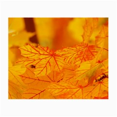 Bright Yellow Autumn Leaves Small Glasses Cloth (2 Side)