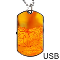 Bright Yellow Autumn Leaves Dog Tag Usb Flash (two Sides)