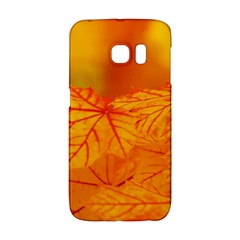 Bright Yellow Autumn Leaves Samsung Galaxy S6 Edge Hardshell Case
