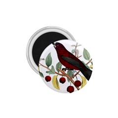 Bird On Branch Illustration 1 75  Magnets by Jojostore