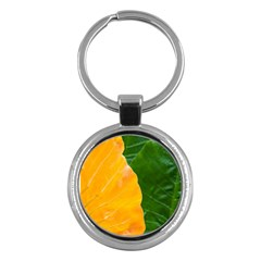 Wet Yellow And Green Leaves Abstract Pattern Key Chains (round)