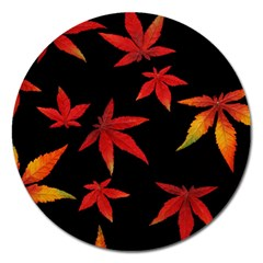 Colorful Autumn Leaves On Black Background Magnet 5  (round) by Jojostore