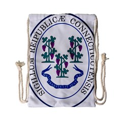Great Seal Of Connecticut Drawstring Bag (small)