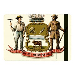 Historical Coat Of Arms Of Delaware Apple Ipad 9 7 by abbeyz71