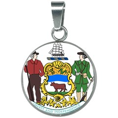 Delaware Coat Of Arms 20mm Round Necklace