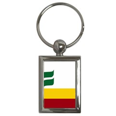 Flag Of Franco-manitobans Key Chains (rectangle)  by abbeyz71