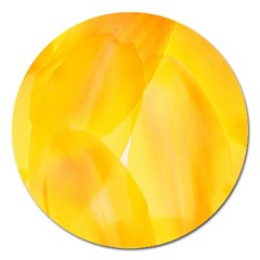 Yellow Pattern Painting Magnet 5  (round) by Jojostore