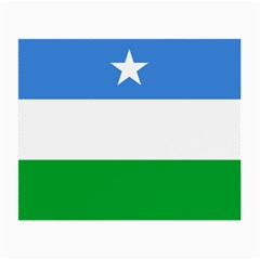 Flag Of Puntland Small Glasses Cloth