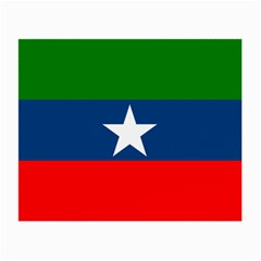 Flag Of Ogaden National Liberation Front Small Glasses Cloth