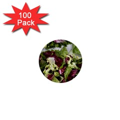 Salad Lettuce Vegetable 1  Mini Buttons (100 Pack)  by Sapixe
