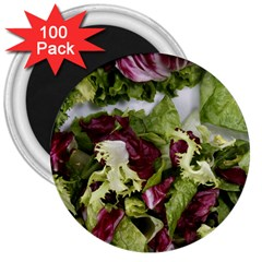 Salad Lettuce Vegetable 3  Magnets (100 Pack) by Sapixe