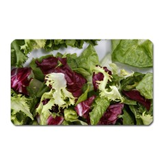 Salad Lettuce Vegetable Magnet (rectangular) by Sapixe