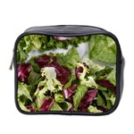 Salad Lettuce Vegetable Mini Toiletries Bag (Two Sides) Front