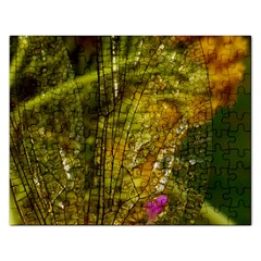 Dragonfly Dragonfly Wing Close Up Rectangular Jigsaw Puzzl by Sapixe