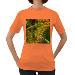 Dragonfly Dragonfly Wing Close Up Women s Dark T Shirt