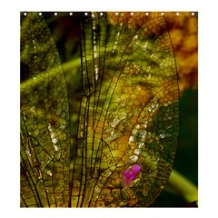 Dragonfly Dragonfly Wing Close Up Shower Curtain 66  X 72  (large)  by Sapixe