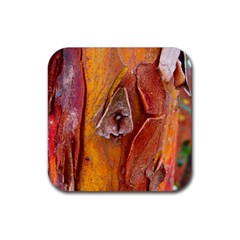 Bark Tree Texture Wood Trunk Rubber Coaster (square)