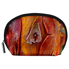 Bark Tree Texture Wood Trunk Accessory Pouch (large)