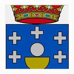 Coat Of Arms Of Galicia Medium Glasses Cloth by abbeyz71