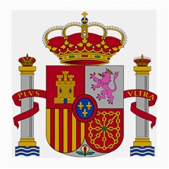 Coat Of Arms Of Spain Medium Glasses Cloth (2 Side) by abbeyz71