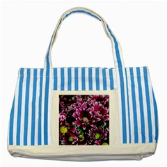 Maroon And White Mums Striped Blue Tote Bag