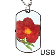 Deep Plumb Blossom Dog Tag Usb Flash (two Sides) by lwdstudio