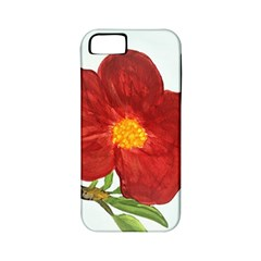 Deep Plumb Blossom Apple Iphone 5 Classic Hardshell Case (pc+silicone)