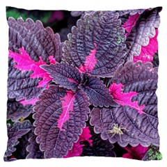 Beefsteak Plant Perilla Frutescens Large Flano Cushion Case (two Sides) by Sapixe