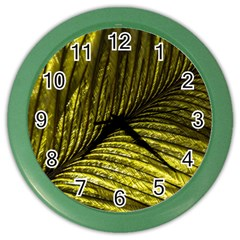 Feather Macro Bird Plumage Nature Color Wall Clock