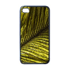 Feather Macro Bird Plumage Nature Apple Iphone 4 Case (black) by Sapixe