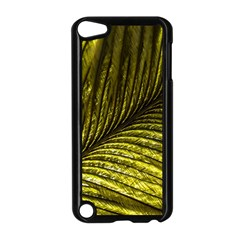 Feather Macro Bird Plumage Nature Apple Ipod Touch 5 Case (black) by Sapixe