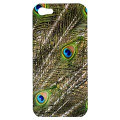 Peacock Feathers Color Plumage Green Apple Iphone 5 Hardshell Case