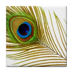 Peacock Feather Plumage Colorful Face Towel