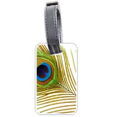 Peacock Feather Plumage Colorful Luggage Tags (two Sides)