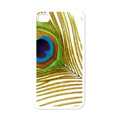 Peacock Feather Plumage Colorful Apple Iphone 4 Case (white)