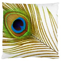 Peacock Feather Plumage Colorful Large Flano Cushion Case (one Side) by Sapixe