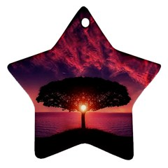 Flight Landscape Nature Sky Ornament (star)