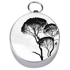 Silhouette Photo Of Trees Silver Compasses