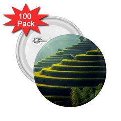 Scenic View Of Rice Paddy 2 25  Buttons (100 Pack)
